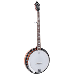 Banjo Recording King 5 String Electric Resonator